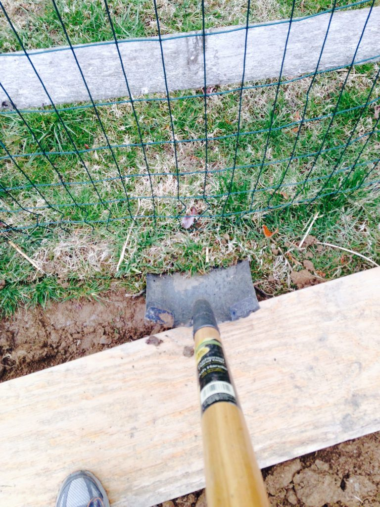 Easy Steps To Building A Raised Garden Bed The Mom Of