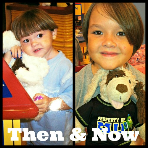 puppy then and now @themommymess @meredithspidel