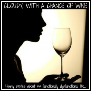 Cloudy With a Chance of Wine @meredithspidel @chanceofwine