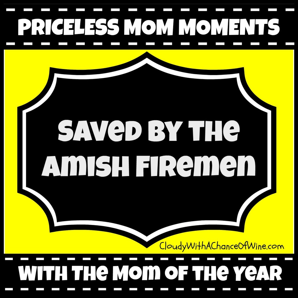 Saved by the Amish Firemen @chanceofwine @meredithspidel