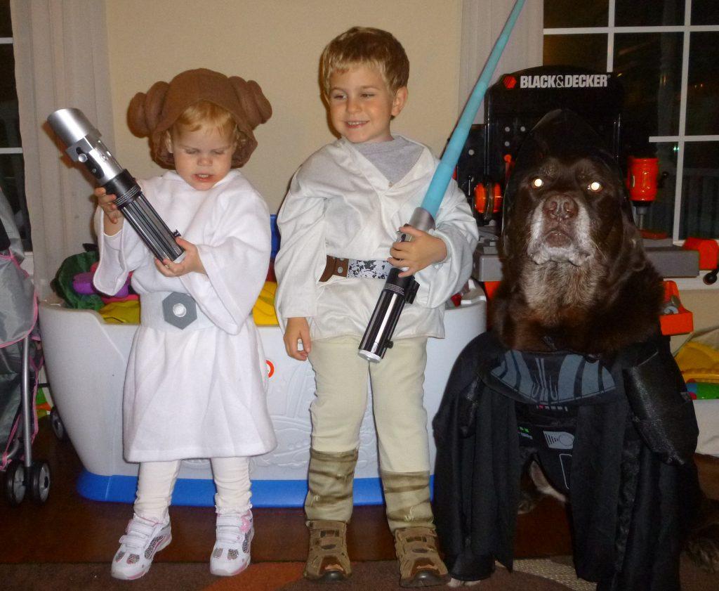 Luke, Leia and Darth Vader Star Wars Halloween costumes @meredithspidel