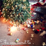 Surviving all the stress and craziness of the holidays is no joke. Downed Christmas trees and all, I think I'm onto a valuable trick to help see us through. Tune in here--and grab a glass of eggnog to help us toast our survival!