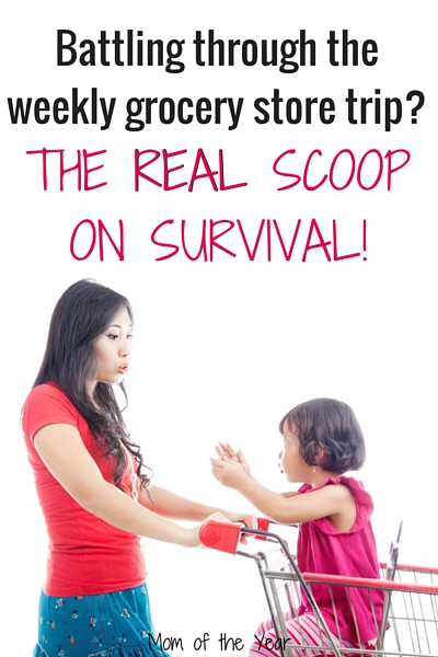 Feel like every week is a battle get through a grocery store shopping trip with your kids? This true account of a mom in the grocery store will leave you not only feeling NORMAL (I promise), but with a super perspective that WILL HELP you keep the faith as you food shop with kids--week after blessed week. The truth will shock you, but you've got this, moms, I promise!