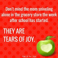 Feeling the stress of back to school time? No worries, you aren't alone! This transition is harder than most people acknowledge, and the truth is, for most of us, September has won! But, hey, don't feel defeated, check these two smart truths to help you cope with the chaos--and go be wowed by the insanity I've already rocked in the first three weeks of school!