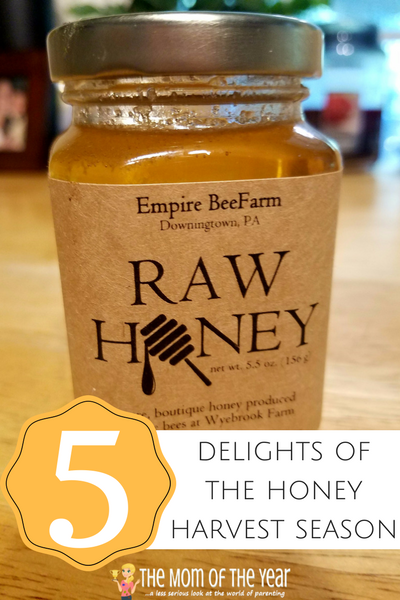Honey Harvest time is here! One of the first harvests of the fall season, grab these 5 ways to celebrate and delight in fresh, raw honey! Bees and beekeepers work really hard and it's time to enjoy the spoils of their labor--I love the 3rd idea!