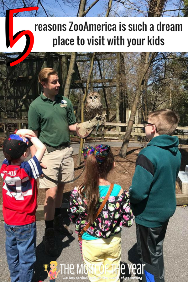 ZooAmerica's 40th Anniversary is happenning! Such a cool, family-friendly zoo that is the perfect spot for a day out with the kiddos! Go enjoy your family day out, mama!