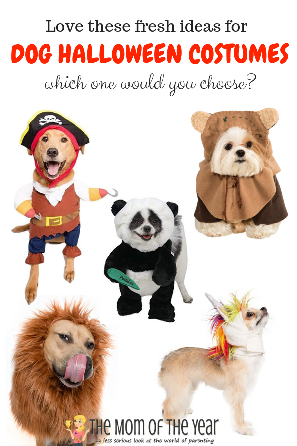 I LOVE dressing up my dogs in pet costumes for Halloween! Check out these adorable, fun and fresh ideas for Halloween costumes for your pup or cat! Which one would you choose?