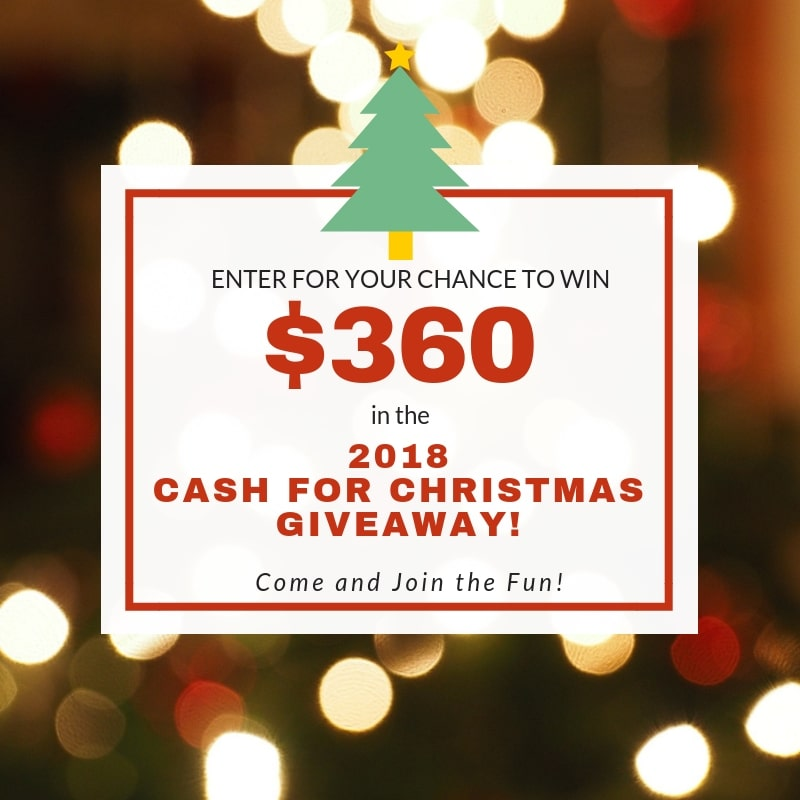 It's time for a Christmas giveaway! Are you getting geared up for the shopping season? Do you need extra cash for Christmas?? Don't we all! Go budget-friendly and score for your family!