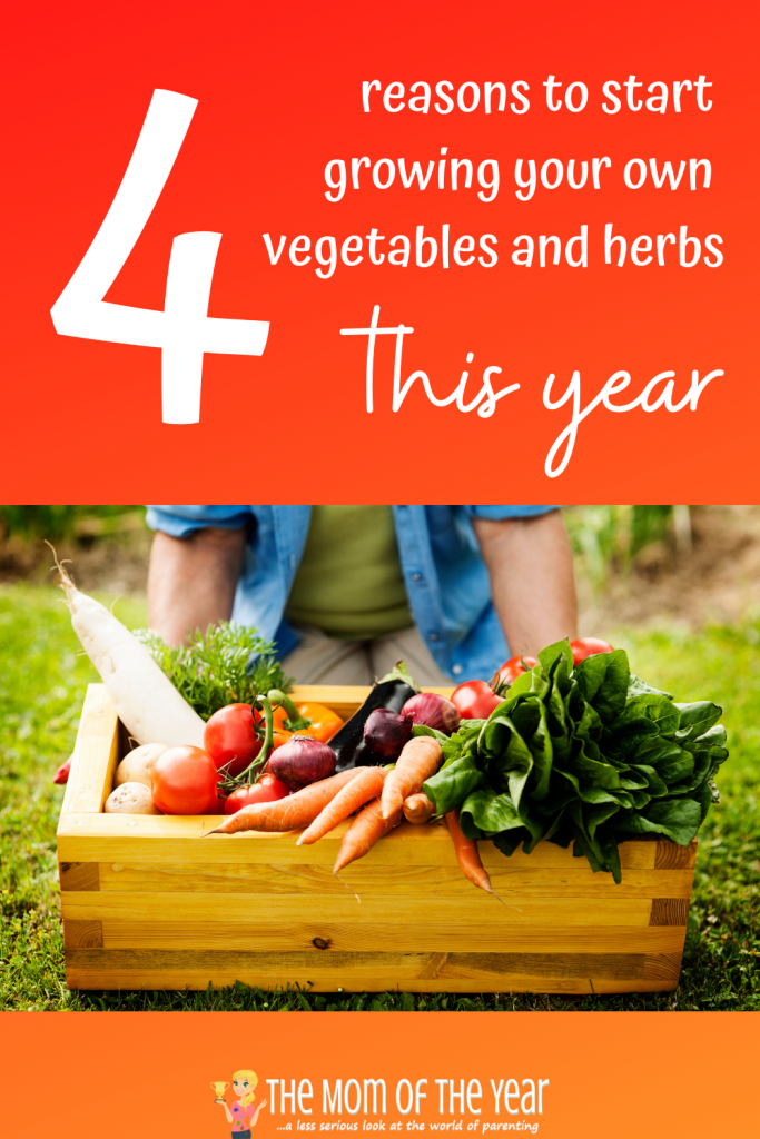 On the fence about starting a garden? Check out these 4 reasons to grow your own vegetables and herbs and you will be sold. #4 floored me!
