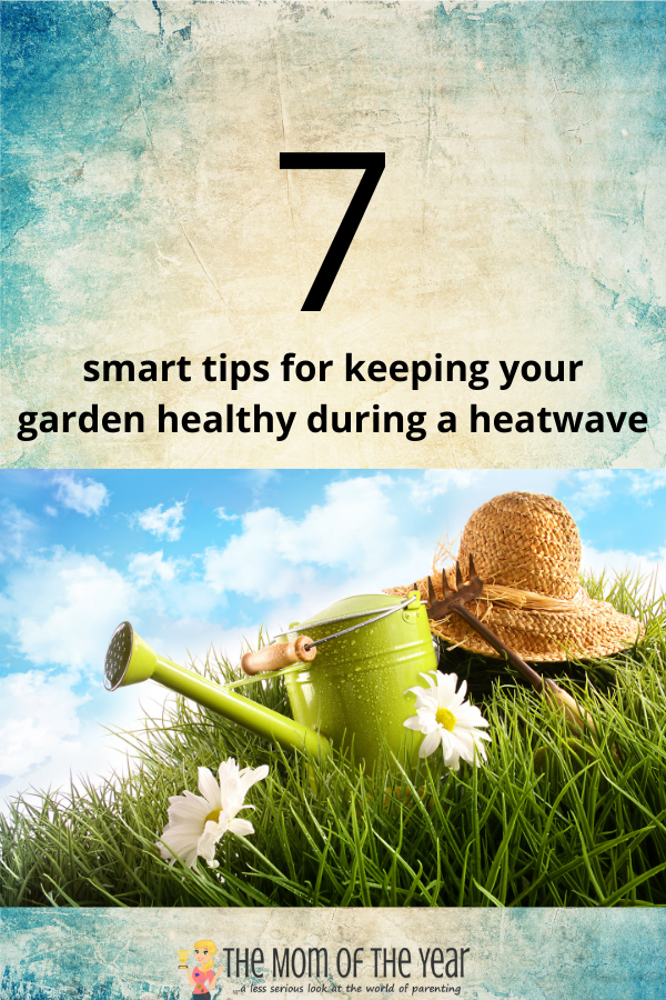 Try these 7 smart hacks to keeping your summer garden healthy during a heatwave--they work! I never knew this about replanting!